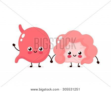 Strong Cute Healthy Happy Intestine Gut And Stomach Character. Vector Flat Cartoon Illustration Icon