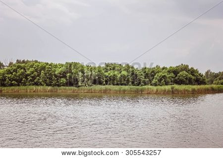 River View. The Island In The River. Backwater. Blue Surface Of The River