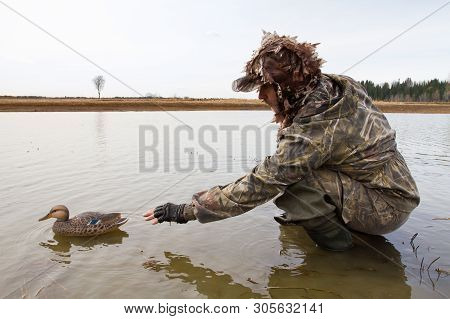 Waterfowler Places A Plastic Duck Decoy In Shallow Water Before The Hunt