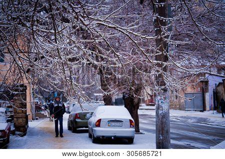 Odessa / Ukraine - 01 23 2014: Ice Covered Trees On City Street. Winter Scene In Odessa Ukraine. Icy