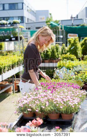 Buying New Plants
