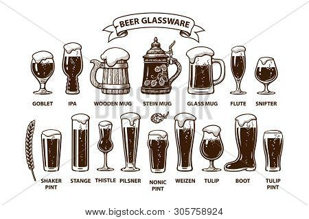 Beer Glassware Guide. Various Types Of Beer Glasses And Mugs.. Design Elements For Brewers Festival,