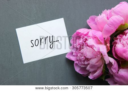 Sorry On The White Paper. Sorry Card Message On White Postcard And Pink Flowers Flatley Style Decora