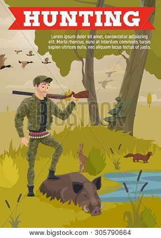 Forest Hunting, Hunter In Camouflage Wild Animals Trophy And Ammo Equipment, Rifle Gun And Bullet Ca