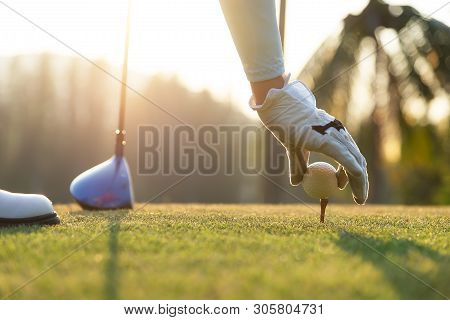 Hand Of Woman Golf Player Gentle Put A Golf Ball Onto Wooden Tee On The Tee Off, To Make Ready Hit A