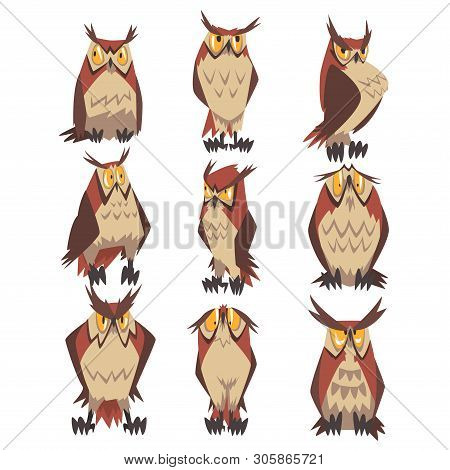 Collection Of Great Horned Owls Birds Characters, Eurasian Eagle Owls Vector Illustration