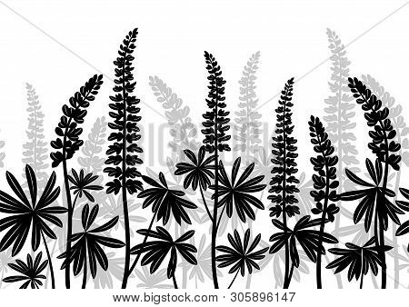 Seamless Horizontal Background Of Plant Pictograms, Lupine Leaves And Flowers, Black And Grey On Whi