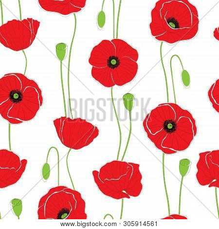 Poppy Flowers. Seamless Background Pattern. Can Be Used For Textile, Wallpapers, Prints, Bedclothes.