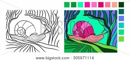 Vector Drawing Of Snail. Mollusk In Contour Style For Fauna Coloring Book. Coloring Book Page For Ad