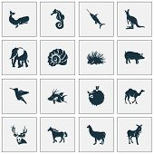 Fauna icons set with hogfish, porcupine, swordfish and other joey elements. Isolated  illustration fauna icons. poster