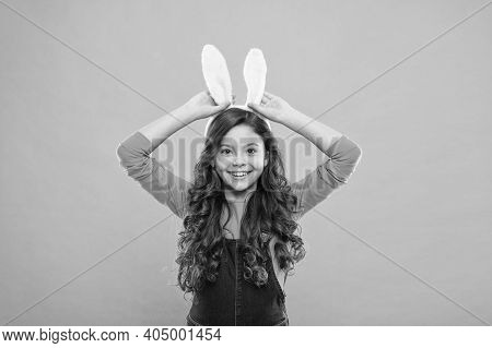 Where Easter Rabbit Comes From. Happy Bunny Rabbit. Little Girl Wear Rabbit Ears. Beauty Look Of Bab