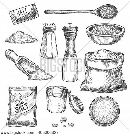 Sea Salt. Sketch Vintage Hand Mill With And Seasoning. Engraved Jar, Spoon And Bags With Organic Sal
