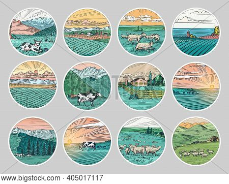 Rural Meadow Stickers. A Village Landscape With Cows, Goats And Lamb, Hills And A Farm. Sunny Scenic