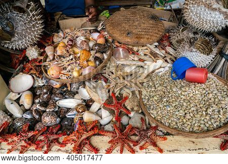 Shells And Dry Stuffed Sea Animals On The City Market In Africa, Fish Market In Dar Es Salaam, Tanza