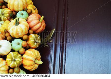 Pumpkin And Lizard Fall Autumn Wreath Red Door Gourd  Background Holiday