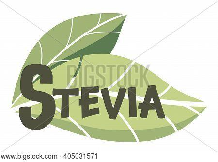 Stevia Sweetener Vector Logo Template. Green Leaf Of Sugar