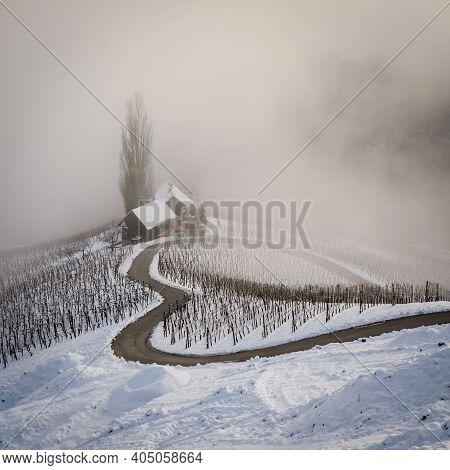 Famous Heart Shaped Wine Road In Slovenia In Winter, Heart Form - Herzerl Strasse, Vineyards In Wint