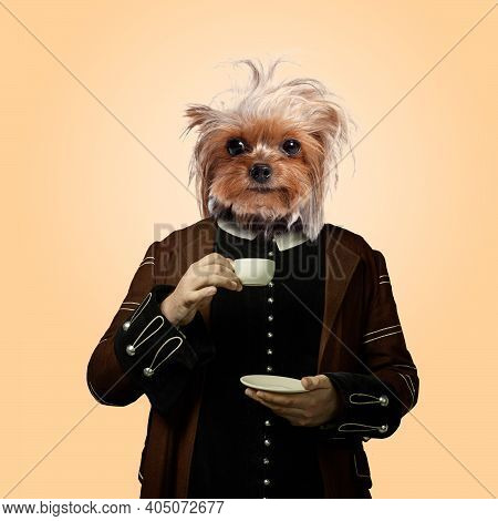 Morning. Model Like Medieval Royalty Person In Vintage Clothing Headed By Dog Head On Orange Soft Ba