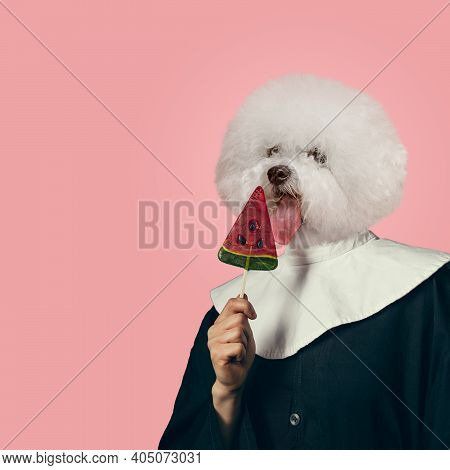 Tastes. Model Like Medieval Royalty Person In Vintage Clothing Headed By Dog Head On Coral Pink Back