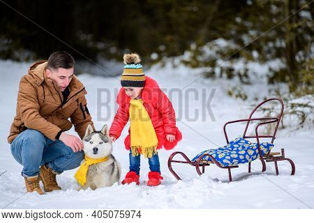 Family Walk In The Winter Forest With Huskies, Happy Daughter And Dad Playing With A Dog.