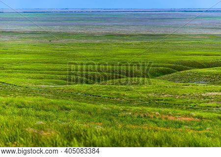 Steppe Landscape. The Steppe Is Woodless. Ravine In The Steppe.