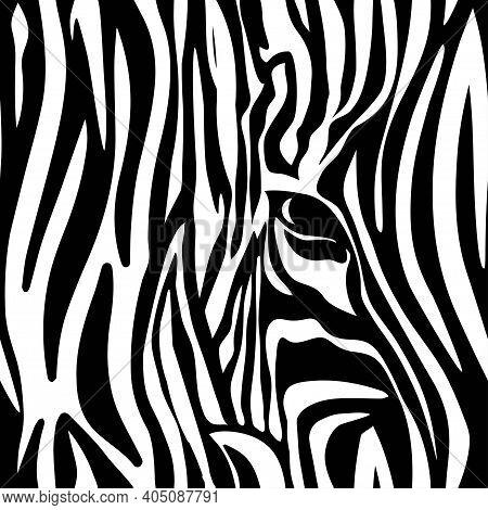 Seamless Zebra Skin Texture Pattern, Repeating Pattern With Zebra Eye, Black And White Striped Anima