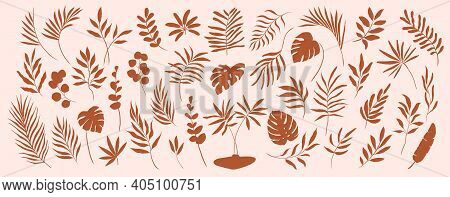 Set Of Hand Drawn Modern Tropical Exotic Terracotta Leaves And Branches Illustration