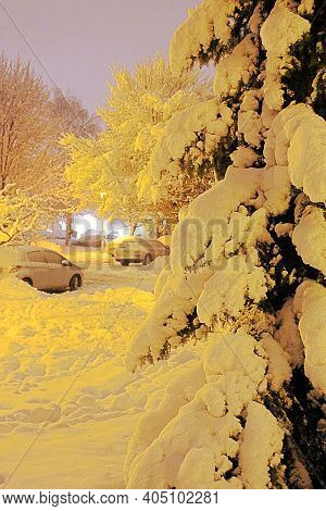 Winter Season, The Christmas Tree Covered With Snow, A Large Amount Of Snow On The Streets And Sidew