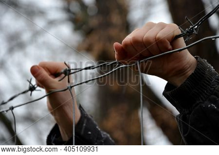 Child In A Refugee Camp Behind A Wire Fence In Winter Rainy Day. Holding Barbed Wire With Small Hand