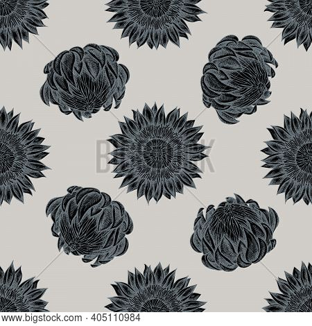 Seamless Pattern With Hand Drawn Stylized Protea Stock Illustration