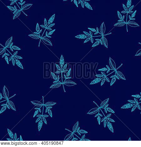 Seamless Pattern With Peppermint Mentha Piperita . Vector Illustration Blue Background.