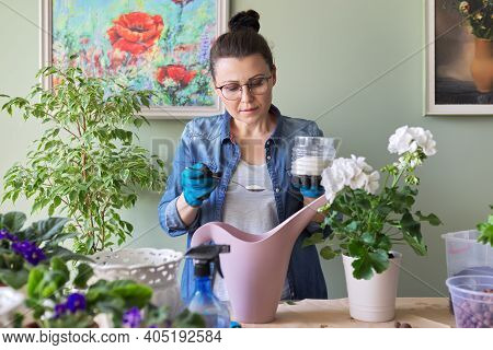 Fertilizing Houseplants In A Pot With Sugar, Care And Nutrition Of Indoor Plants. Houseplants, Potte