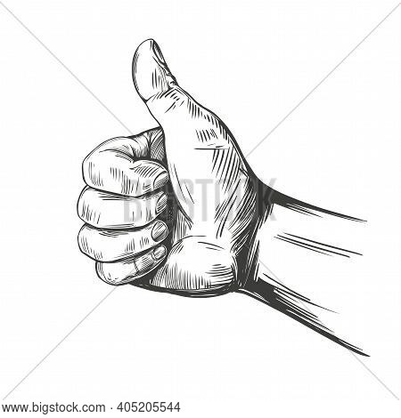Like And Dislike, Thumbs Up Sign Icon. Hand Drawn Vector Illustration Realistic Sketch