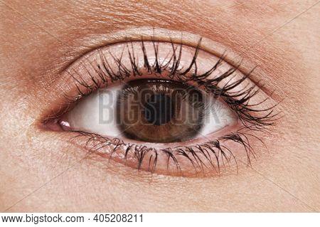 Close up shot of woman eye with hazel brown eyes