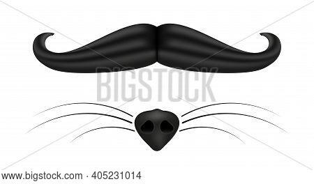 Vintage Mens Mustache. Female Fox Nose And Mustache. 3d Cartoon Vector Illustration.