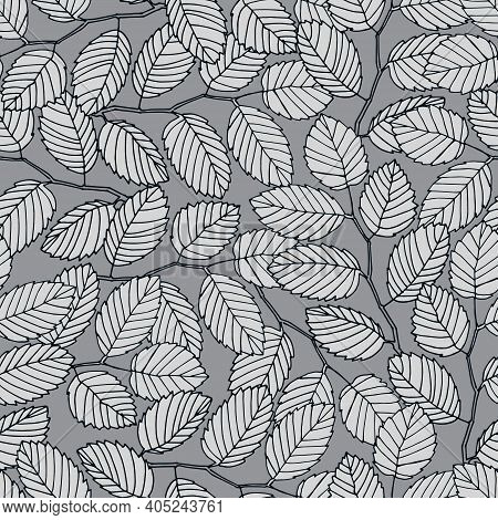 Seamless Pattern With Elm Tree Branches And Leaves On White Background For Surface Design And Other