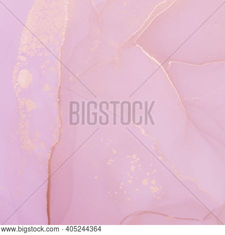 Pink Ink Wash Pastel. Abstract Wallpaper. Art Color Texture. Liquid Splash. Rose Oil Paint. Alcohol