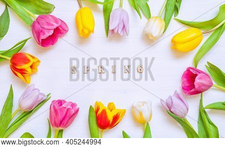 Spring flower background. Lovely spring tulip flowers on wooden backdrop with inscription Spring, spring flower holiday postcard. Spring flower background with tulip flowers