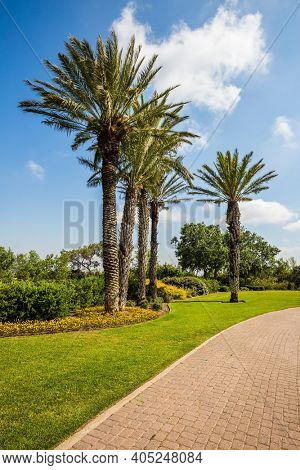 Warm sunny day. Great walk in a clean well-kept park. Stone paved scenic walkway. Israel. The magnificent botanical park on the slopes of Mount Carmel