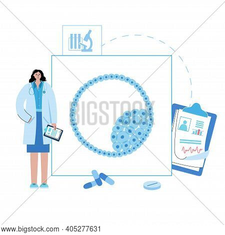 Blastocyst With Stem Cell Icon. Embryo Development Stage. Doctors In Clinic Or Laboratory. Pregnancy