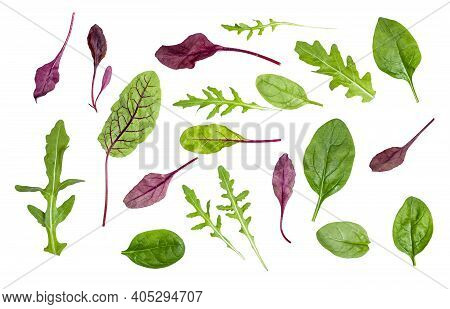 Many Fresh Leaves Of Various Leafy Vegetables (chard, Spinach, Arugula) Isolated On White Background