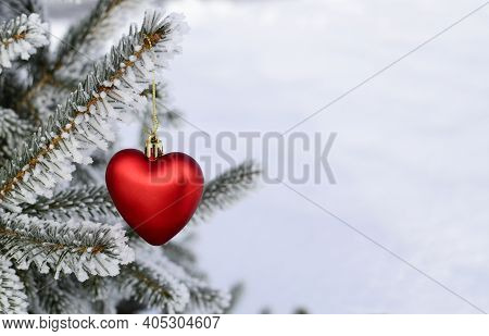 Christmas Toy In Shape Of Red Heart Hanging On Branch Of Fir Tree In Frost, Snow. Christmas Tree In