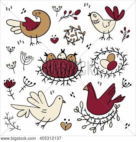 Set Of Images Of Birds. Design Elements In Cute Doodle Style. Natural Style, Branches, Plants, Eggs,