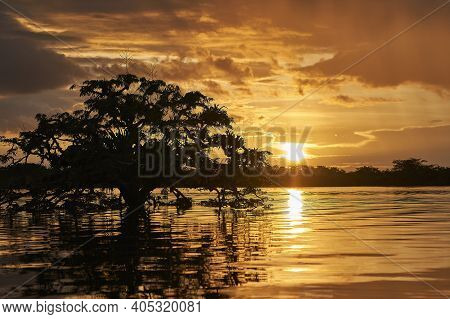Romantic And Dramatic Sunset Over The Beautiful And Pristine Landscape Of The Tranquil Cuyabeno Rive