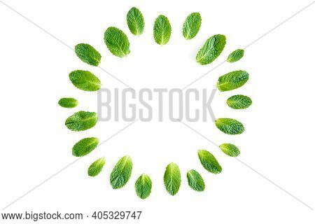 Wreath Frame Made Of Mint Leaves Isolated On White Background. Set Of Peppermint. Mint Pattern. Flat