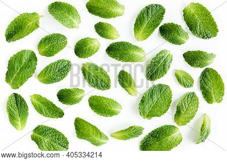 Mint Leaves Isolated On White Background. Set Of Peppermint. Mint Pattern. Flat Lay. Top View.