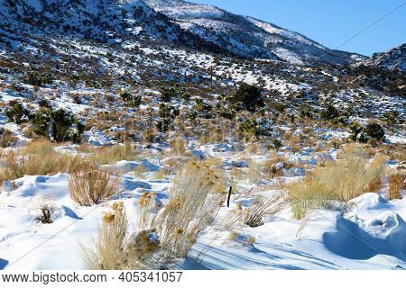 Snow Surrounding Sage And Chaparral Plants On A High Desert Plateau Besides Rural Mountains Taken At