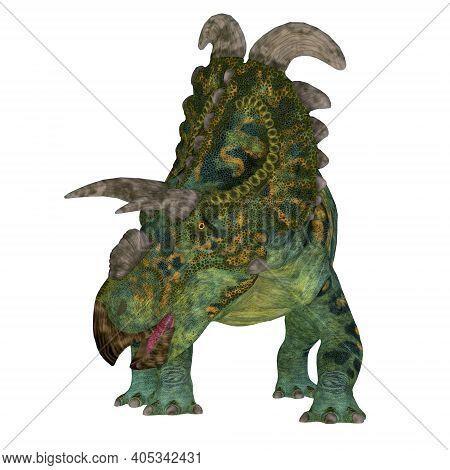 Albertaceratops Dinosaur Front 3d Illustration - The Ceratopsian Herbivorous Dinosaur Albertaceratop