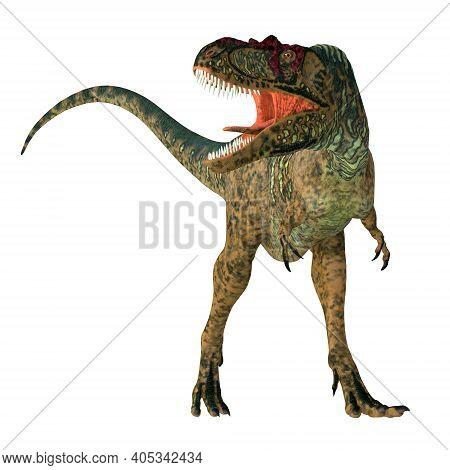 Albertosaurus Dinosaur Front 3d Illustration - Albertosaurus Was A Carnivorous Theropod Dinosaur Tha