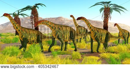 Jobaria Dinosaurs 3d Illustration - A Herd Of Jobaria Dinosaurs Travel Together In The Sahara Desert